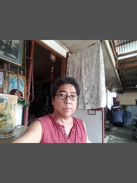 Chinoyed  main photo